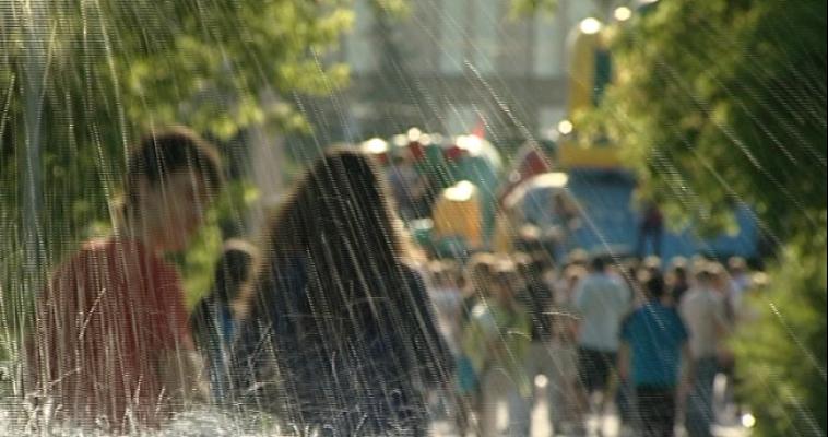Бахметьев призывает предпринимателей поучаствовать в озеленении города