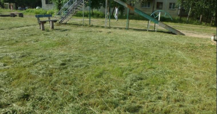 За неделю администрация выдала 15 предписаний о покосе травы