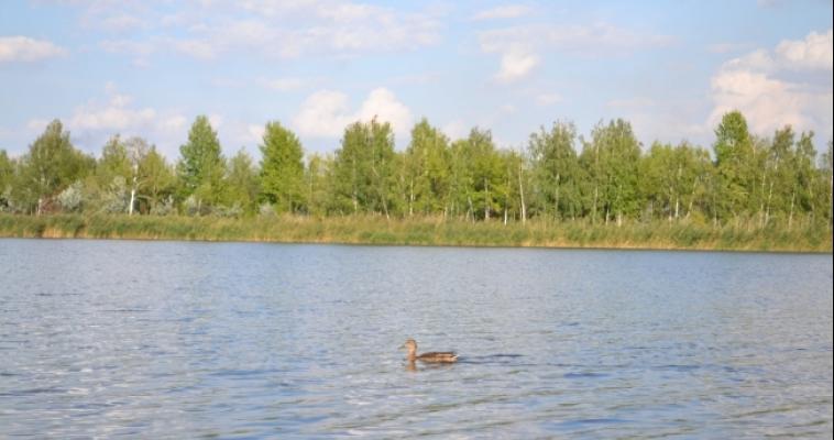 Организация сбрасывает загрязнённые сточные воды в реку