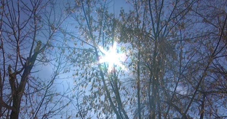 Американские учёные: Солнце поглотит Землю
