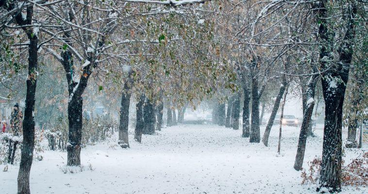 Объявлены неблагоприятные метеоусловия