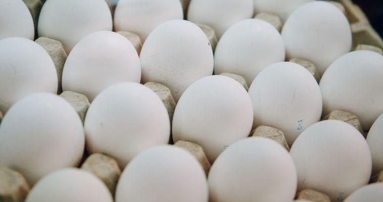 Творог, яйца и инфекция в придачу