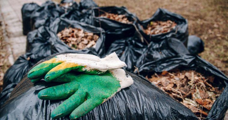 Горожан приглашают принять участие в «Зеленой весне»