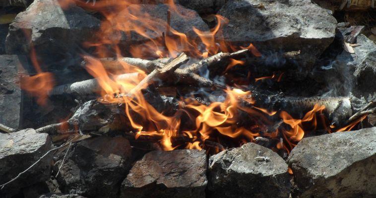 Лесных пожаров стало меньше