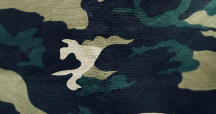 Суд запретил сайты, которые учат косить от армии