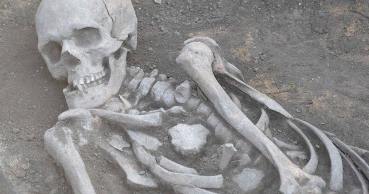 Возле Аркаима раскопали скелет древнего уральца