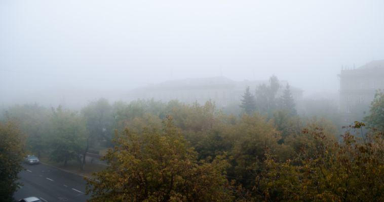 Сегодня был туман, а что нас ждет завтра?