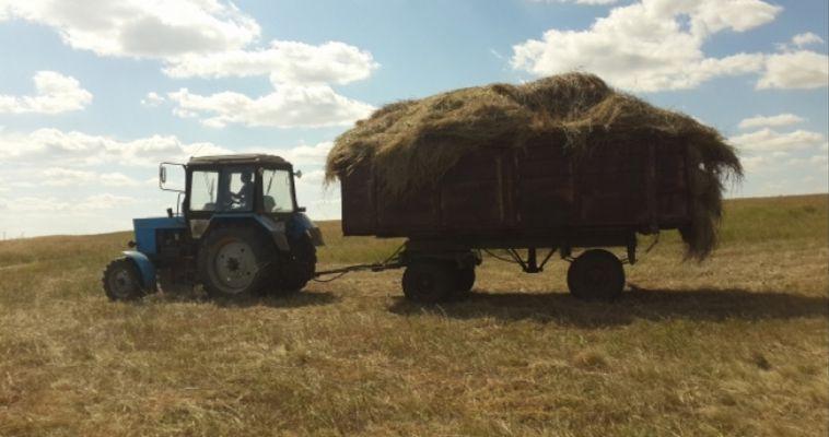 Аграрии Челябинской области выполнили наказ губернатора
