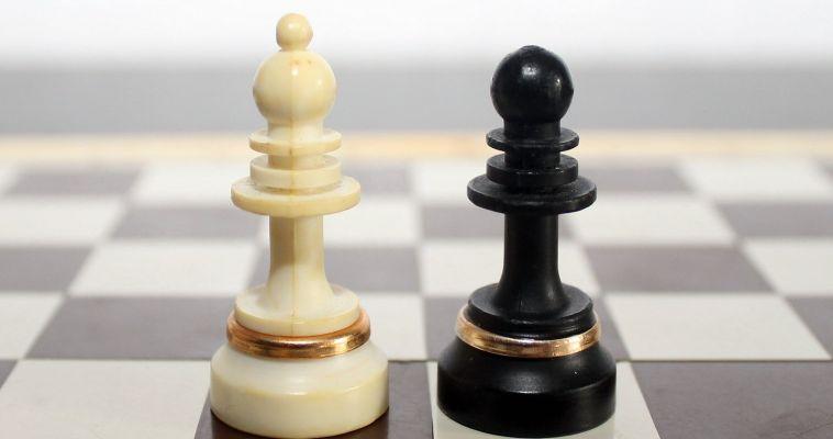 Шахматы добавят в 65 школ и детских садов