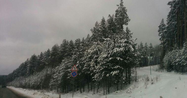 Трассу М-5 «Урал» накрыла непогода