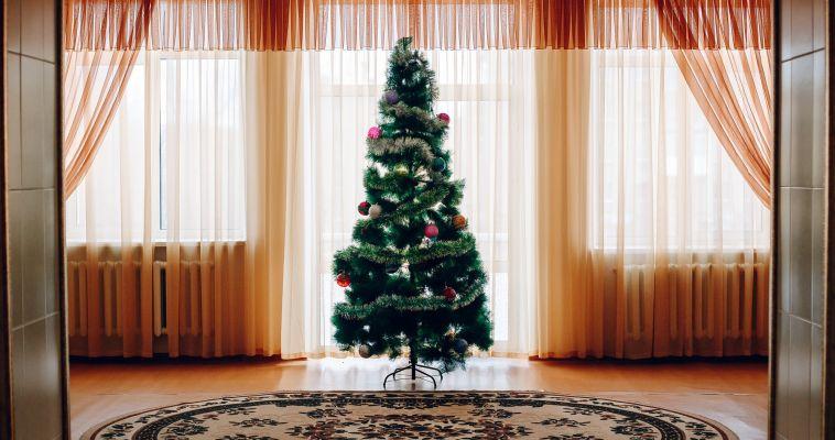 Вторая жизнь елки. Интересные идеи