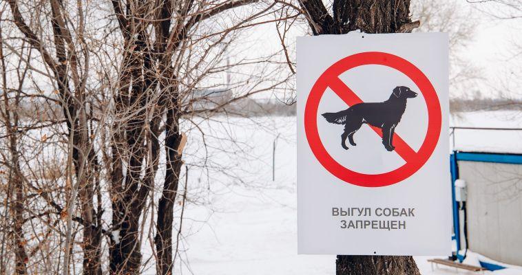 Депутаты предложили ввести бесплатную регистрацию домашних животных