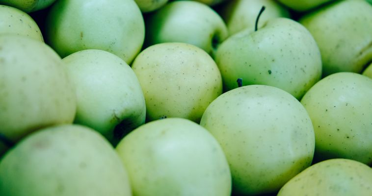 Польские яблоки не пустили в Россию