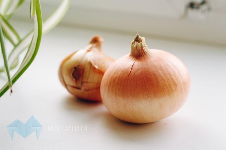 Любовь Скляр рассказала, зачем в садиках луковый салат
