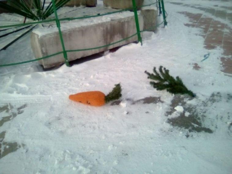 Хулиганы отобрали у скульптуры зайца морковь
