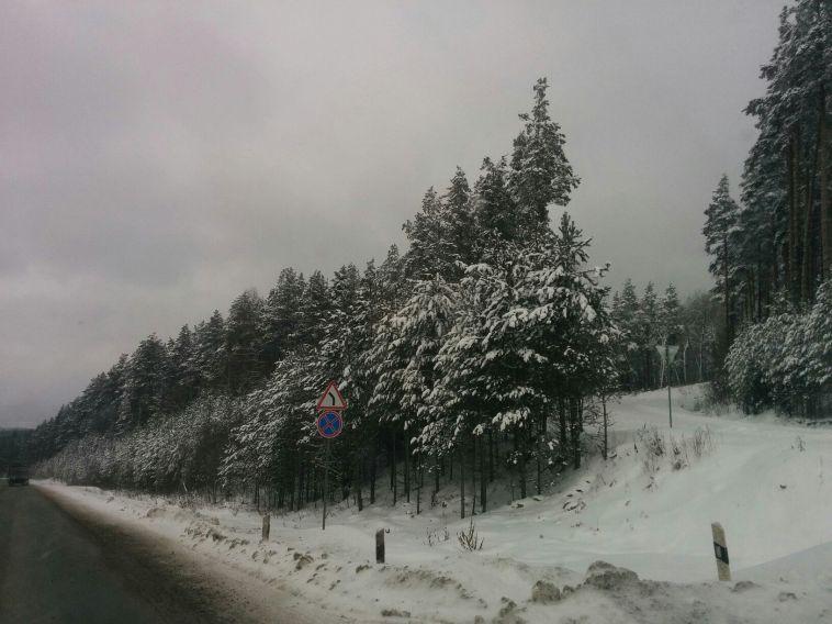 Магнитогорский студент насмерть замёрз на трассе