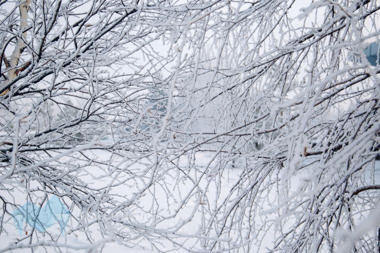 На Южный Урал надвигаются сильные морозы