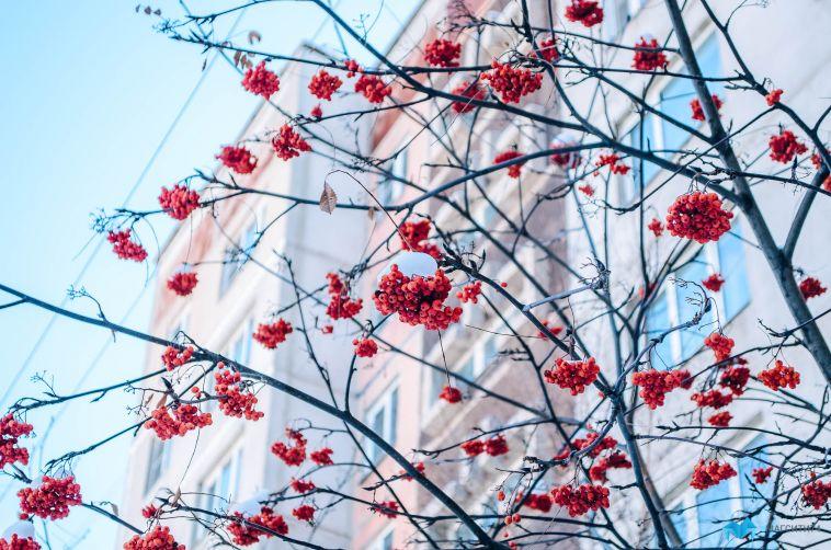 Весна близко: в Магнитке обещают -5
