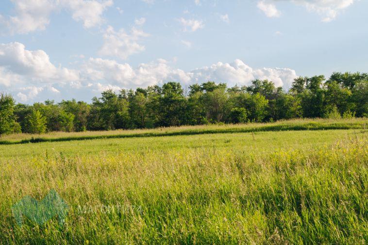 Магнитогорцы смогут получить бесплатную землю в Вологодской области