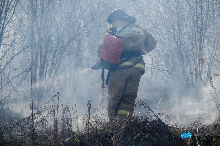 В МЧС области сообщили, что лесные пожары удалось победить
