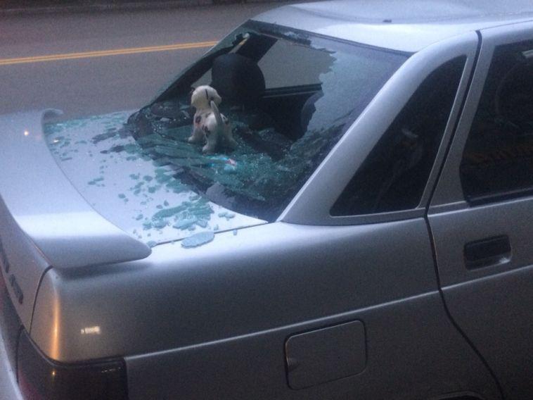 Мужчина разбил машину бывшей жены