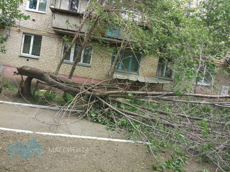 В Магнитогорске сдуло вывеску, батут и повалило деревья