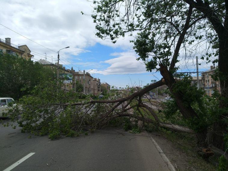 Замглавы города поручил навести порядок на улицах после шторма