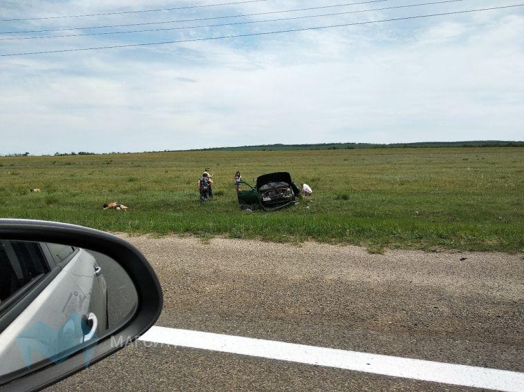В Агаповском районе на повороте автомобиль вылетел с трассы