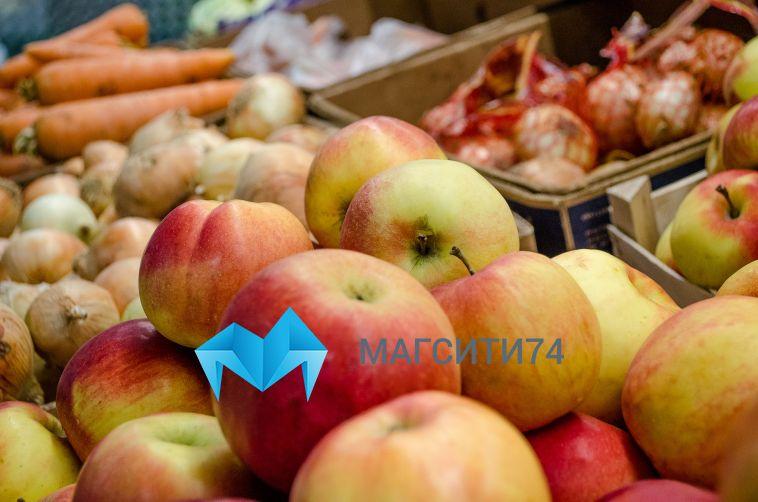 В России ввели ограничение на ввоз фруктов и цветов для туристов