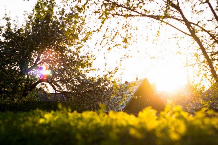 На выходные обещают и дождь, и солнце