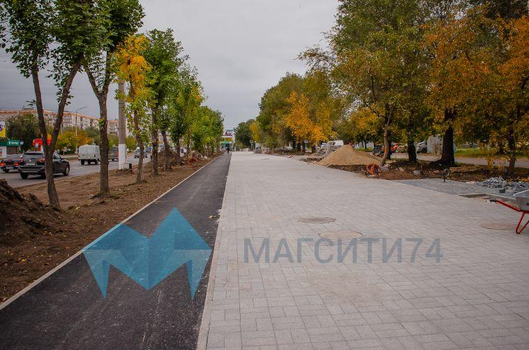 Магнитогорцы выбрали кустарник для бульвара вдоль К.Маркса