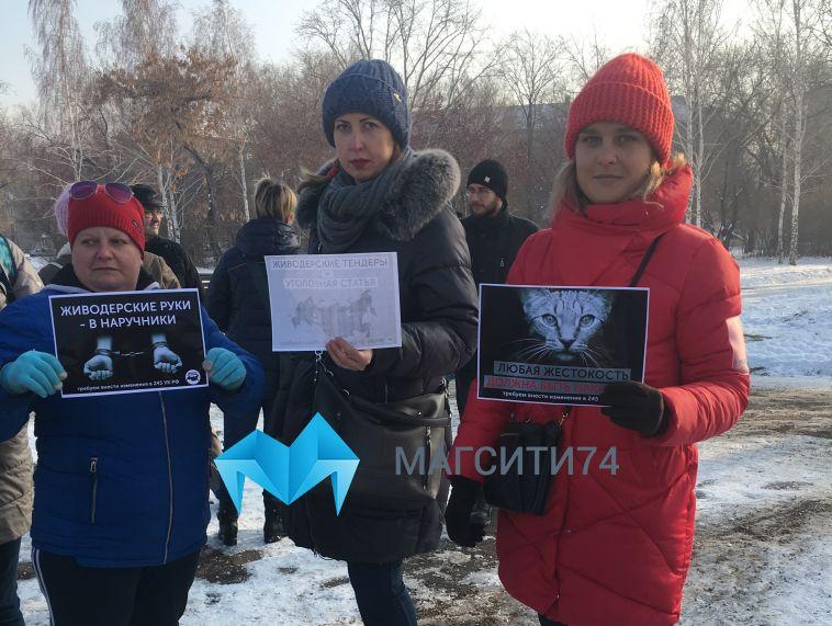 «Закон должен работать, живодёр— сидеть втюрьме»: вМагнитогорске прошел митинг вподдержку животных