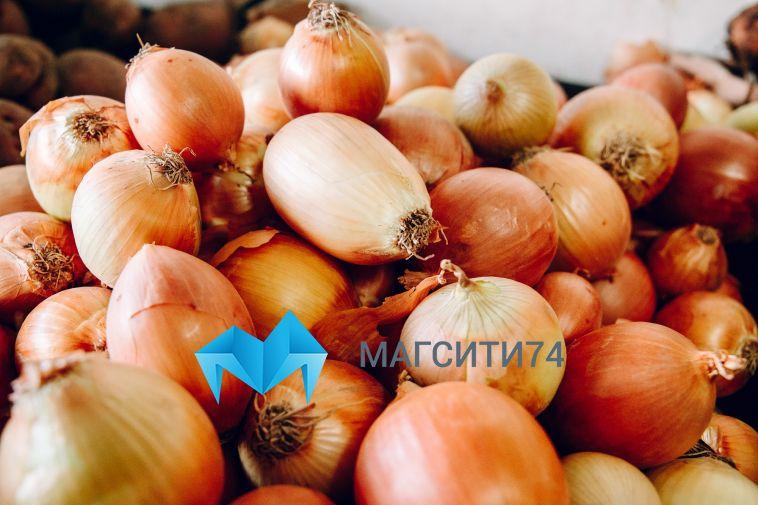 В Магнитогорске скупили около шести тысяч тонн овощей