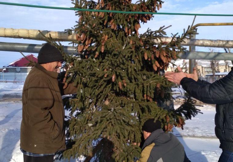 «Решили не выбрасывать»: магнитогорцы установили новогоднюю елку во дворе