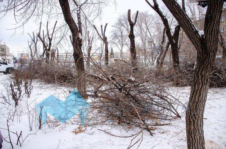 В Магнитогорске снесли деревья без разрешающих документов