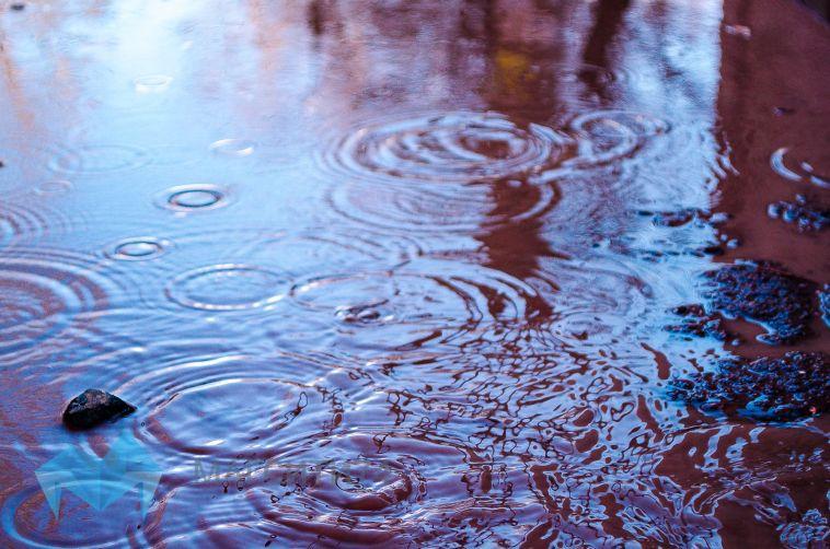 В субботу обещают дождь
