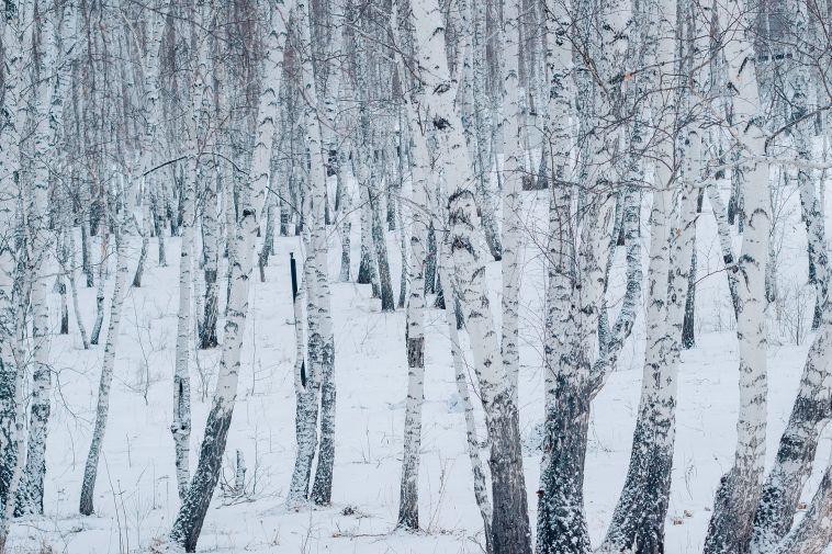 Вначале апреля вМагнитогорске вновь выпал снег
