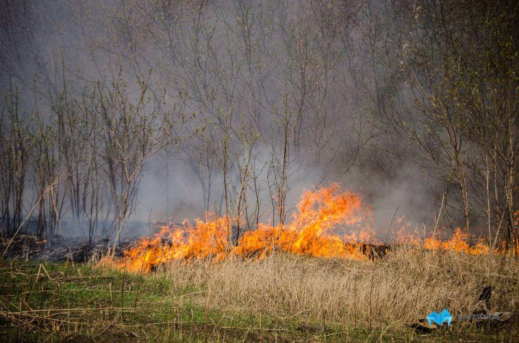Развлекаются на карантине? Магнитогорцы поджигают траву и мусор