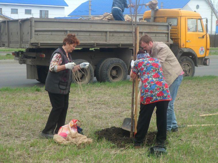 В Челябинской области высадили 234 тысячи деревьев