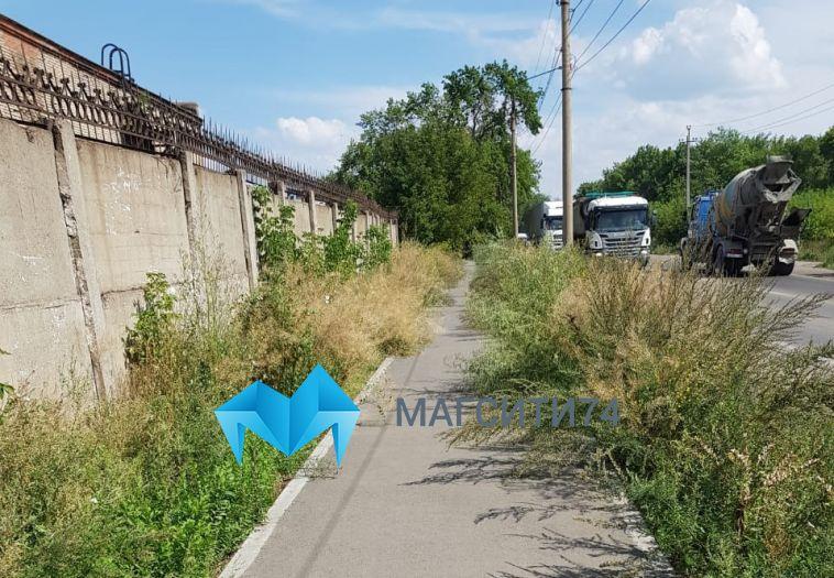 На левом берегу зарастает бурьяном недавно проложенная пешеходная дорожка