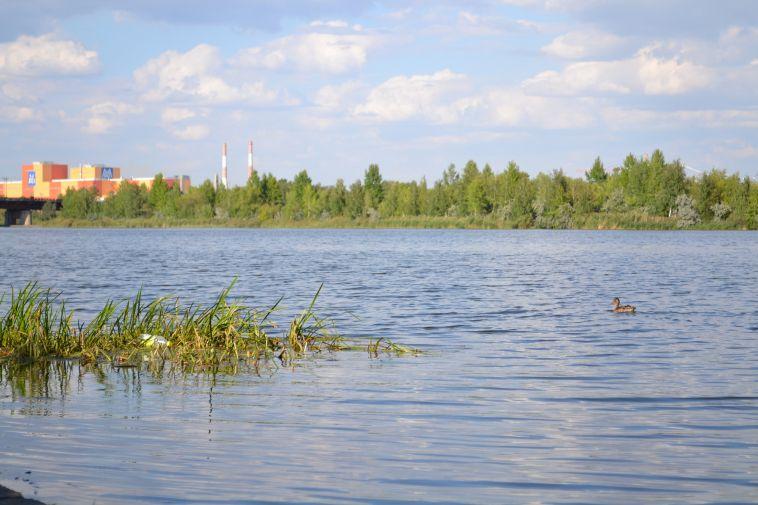 Шины, бутылки и даже магазинная тележка – все это «украшает» акваторию Урала. Активисты вышли на очистку прибрежной зоны