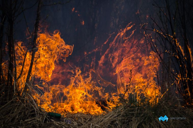 В Башкирии мужчина облил тёщу бензином и поджёг