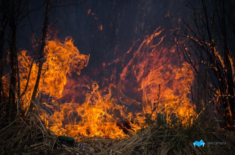 Огонь уничтожил садовый шлакоблочный дом в Магнитогорске