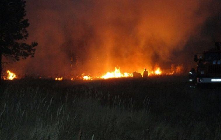 В Челябинской области тушат крупный лесной пожар