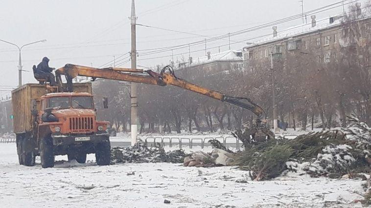 Лежащие возле «Сельсовета»ёлки убрали сразу же после жалоб жителей