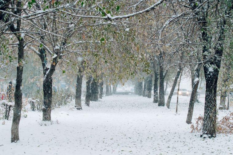 Морозы крепчают. Прогноз погоды на 13 января