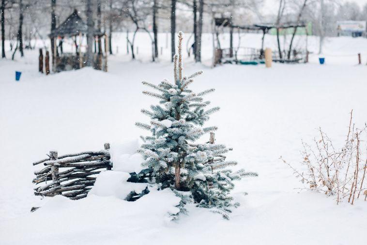 Во вторник в Магнитогорске ожидается пасмурная погода и снег