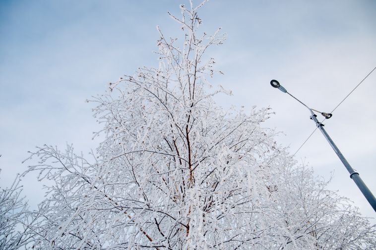 ВМагнитогорске пройдет мокрый снег