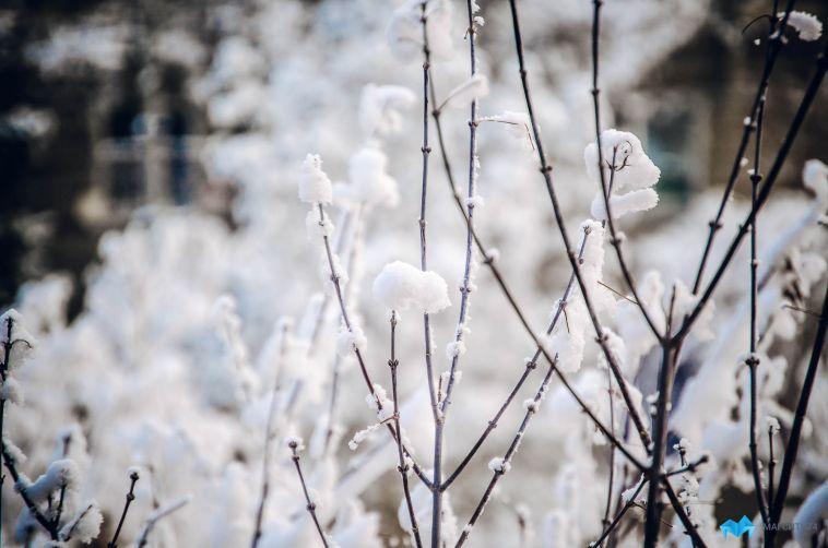 В школах Магнитогорска отменили занятия из-за морозов