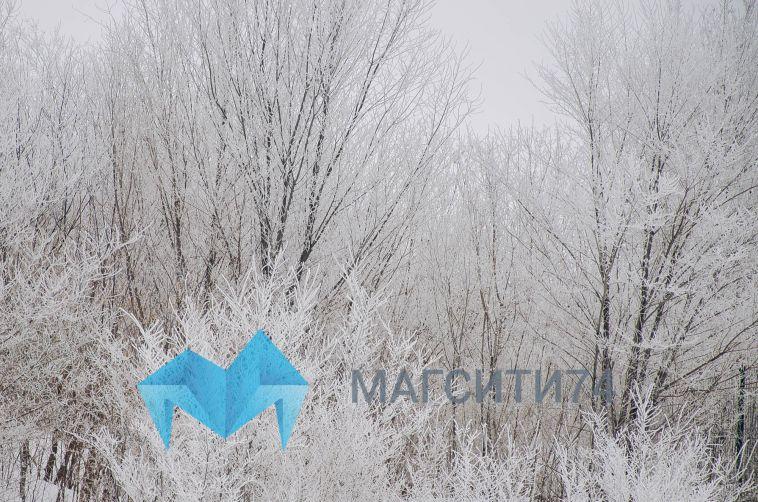 Глава Магнитогорска: «Втаких экстремальных ситуациях чувствуем себя достаточно уверенно»
